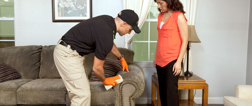 McKinney, TX carpet upholstery cleaning